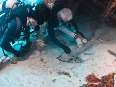 В США продегустировали серое вино из бутылки с утонувшей Марии-Селесты